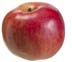 "3.5"" Artificial Weighted Apple - Red/Yellow"