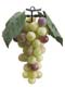 "7"" Artificial Grape Cluster - Green/Rose"