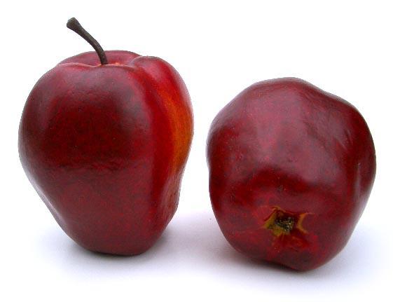 Apple яблоко фото