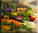 Artificial Vegetables